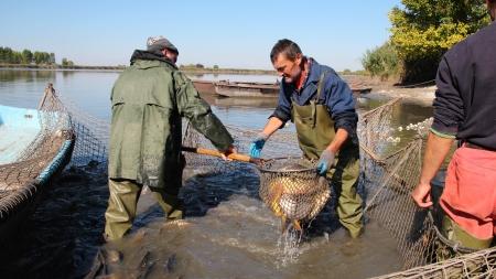fishing industries: Fishermen at Work Stock Photo