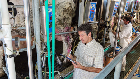 Man Writing On Clipboard in Milking Parlor