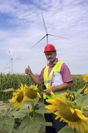 Serious engineer in red safety helmet standing in sunflower field, showing thumb up at wind farm. Portrait of middle aged man in hard hat looking at camera.