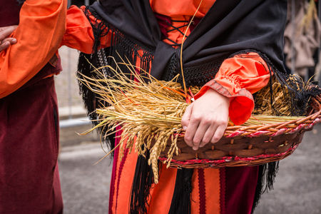 Each year in the city of Lacchiarella is the festival of the goose where local farmers are dressed with traditional clothes and parade through the streets of the city photo