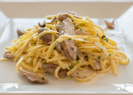 Close-up Italian pasta Tagliolini with mushrooms  Porcini,cream and herbs.