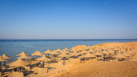 moon chair: Egyptian parasols on the beach of Red Sea