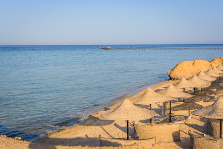 alam: Egyptian parasols on the beach of Red Sea