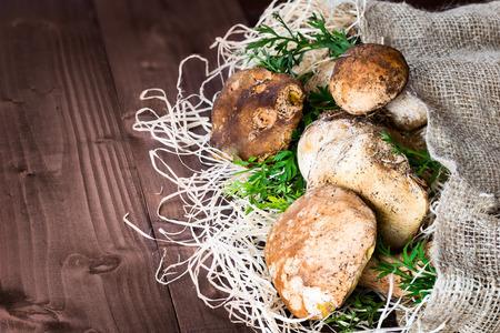 sacco juta: funghi nella foto (Boletus edulis, Porcini) - re dei pori funghi, posti su paglia e sacco di iuta su sfondo di legno. Archivio Fotografico