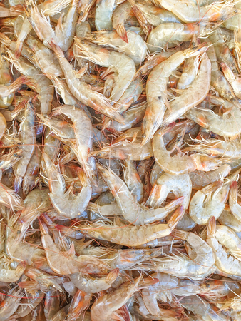Defrost prawn on ice for sale, Fish local market stall with fresh and defrost seafood
