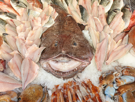 Fresh fish at the fish market stall, in the center a large monkfish Banco de Imagens