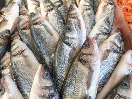 Many sea bass fish on ice for sale, Fish local market stall with fresh seafood,view from top. 写真素材