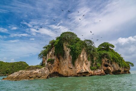 Los Haitises National Park nicknamed the Caribbeans Halong Bay is home to mangroves, caves, a rich tropical forest, multicolored tropical birds and manatees. The coast is dotted with small islets where frigates and pelicans nest. South of the Samana peninsula, Dominican Republic.