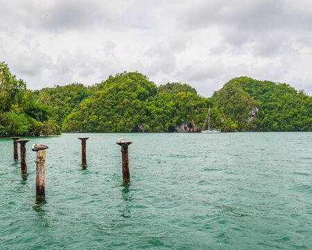 Luxury boat anchored close to exotic tropical forest. small islets where frigates and pelicans nest.Los Haitises natural park,Samana peninsula in Dominican republic.