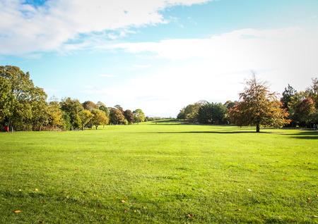 Kilkenny Castle Park during the Fall  Stock Photo