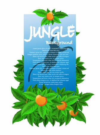 Jungle banner illustration  Vector