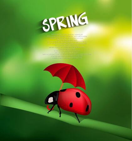 Ladybug with umbrella Vector
