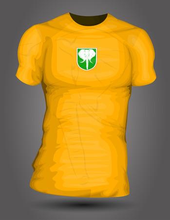 jersey: Ivory Coast soccer jersey