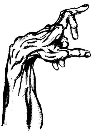 draftsmanship: Hand drwan hand Illustration
