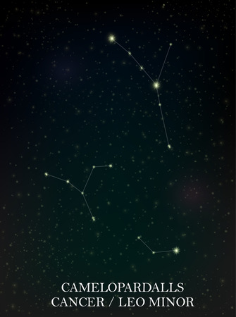 astro: Camelopardalls and Cancer, Leo Minor constellation
