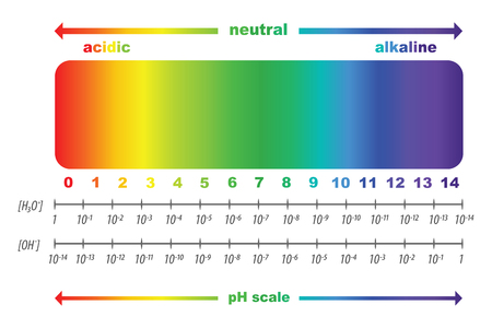 Scale of pH value for acid and alkaline solutions