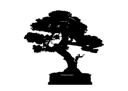 Japanese bonsai tree, plant silhouette icons on white background, green ecology, black silhouette of bonsai. Detailed image. Bio nature concept. Vector isolated Vektorové ilustrace