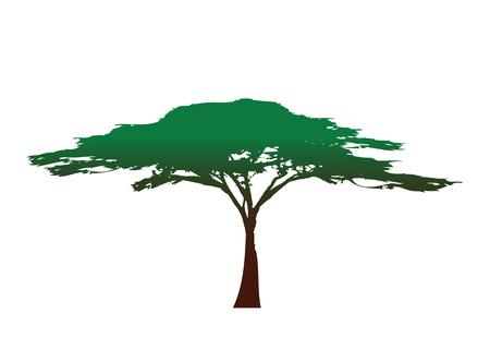 Afrikanische Baumikone, Akazienbaumschattenbild, bunter Vektor lokalisiert Vektorgrafik
