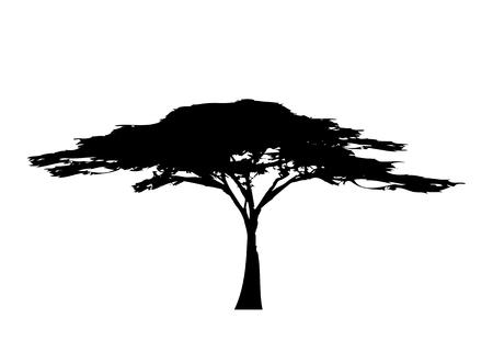 Afrikanisches tropisches Baumlogo-Symbol schwarz und weiß, Akazienbaum-Silhouette, grünes Natursafari-Ökologiekonzept, biologisches Konzept Naturschutzvertrauen, Vektor isoliert auf weißem Hintergrund