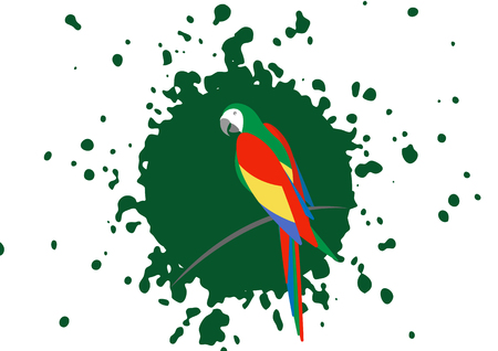 9820fd7d8 parrot design idea, beautiful scarlet macaw bird in natural color, vector  illustration isolated on