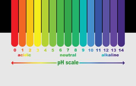 scale of ph value for acid and alkaline solutions, infographic acid-base balance. scale for chemical analysis acid base. vector illustration isolated or black and white background Фото со стока - 131530547