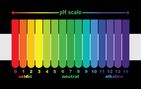 scale of ph value for acid and alkaline solutions, infographic acid-base balance. scale for chemical analysis acid base. vector illustration isolated or black and white background