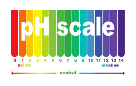 scale of ph value for acid and alkaline solutions, infographic acid-base balance. scale for chemical analysis acid base. vector illustration isolated or white background 版權商用圖片 - 158974592