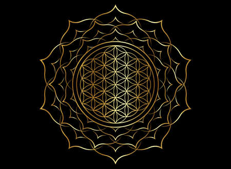 Flower of Life, Yantra Mandala in the golden lotus flower, Sacred Geometry, Metatron cube. Bright luxury symbol of harmony and balance. Mystical gold talisman, vector isolated on black background Vector Illustratie