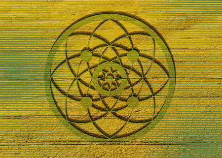 crop circles on green grass, sacred geometry, esoteric Flower of Life, vector mystical sign isolated on green and yellow background Ilustração