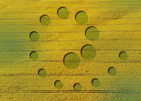 crop circles on green grass, spiral sacred geometry, esoteric geometric shapes, vector round mystical sign isolated on green and yellow background