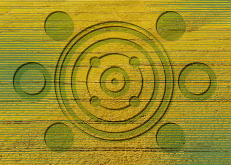 crop circles on green grass, sacred geometry, esoteric geometric shapes, vector round mystical sign isolated on green and yellow background