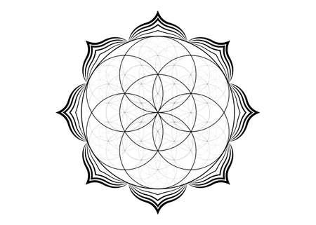 Seed Flower of life lotus icon, yantra mandala sacred geometry, tattoo symbol of harmony and balance. Mystical talisman, black lines vector isolated on white background