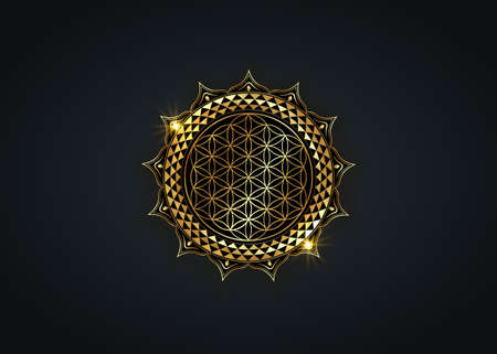 Flower of Life, Yantra Mandala in the lotus flower, Sacred Geometry. Bright golden luxury symbol of harmony and balance. Mystical lotus gold talisman, vector isolated on black background