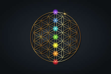flower of life and the seven chakras. Gold Sacred Geometry, set chakra points meditation. Colored chakra lights. Yoga, zen, Buddhism, recovery, wellbeing concept. Vector isolated on black background 向量圖像