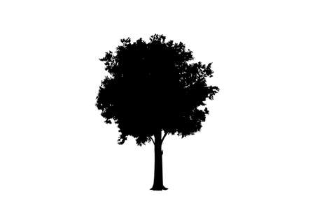Beautiful tree vector silhouette icon vector illustration for nature websites and apps, logo template isolated on white background