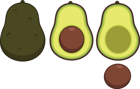 Illustrated set of avocados featuring full and half exposure.