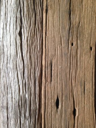 orchidea: Timber wood