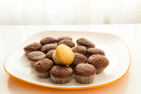 Tasty muffins with one cake muffin on top in the plate on the table near to window with natural sun light