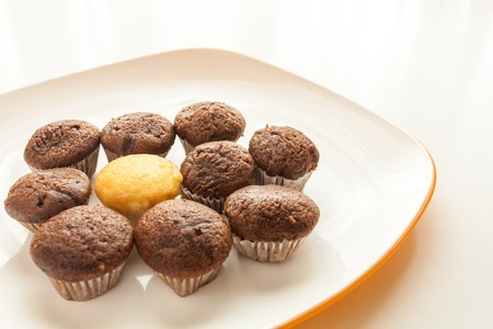 Tasty muffins with one cake muffin in center in the plate on the table near to window with natural sun light