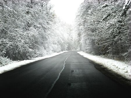 Winter road with some fog Stock Photo - 2570186