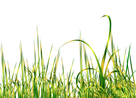 Cool groene gras Stock Illustratie