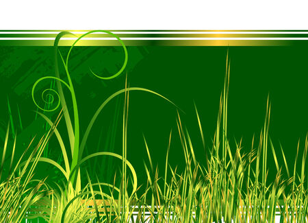 Floral green background with grass, look for more great images in my portfolio