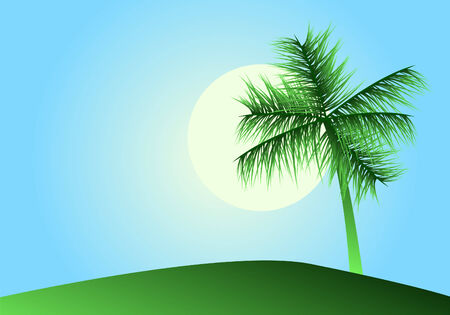 Tropical landscape with palm Stock Vector - 3013876