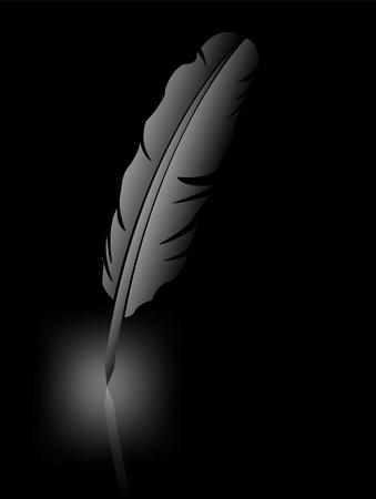 a poet: Feather on black background Illustration