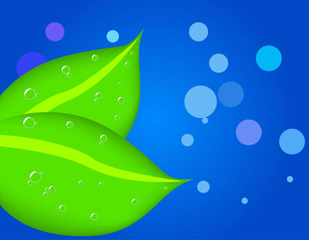 Two leaves with dew Vector
