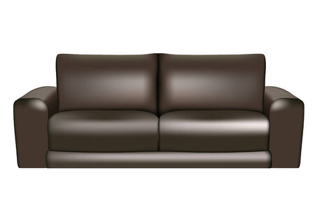 couch: Black sofa