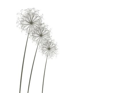 Dandelions Stock Vector - 4381605