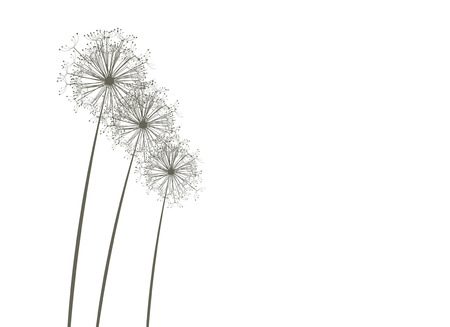 Dandelions Stock Vector - 4381605