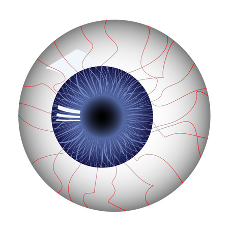 Human eyeball Stock Vector - 4381582