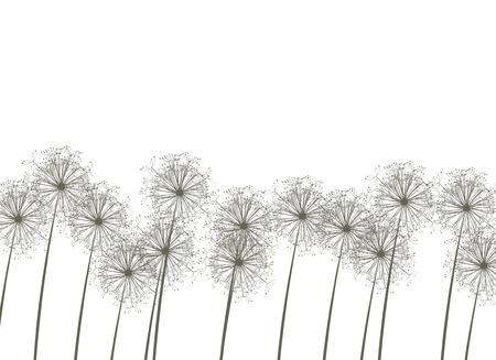 posterity: Dandelions, vector illustration